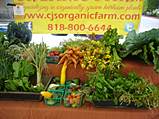 CJ's Organic Farms at the Pasadena Farmers' Market in Villa Parke